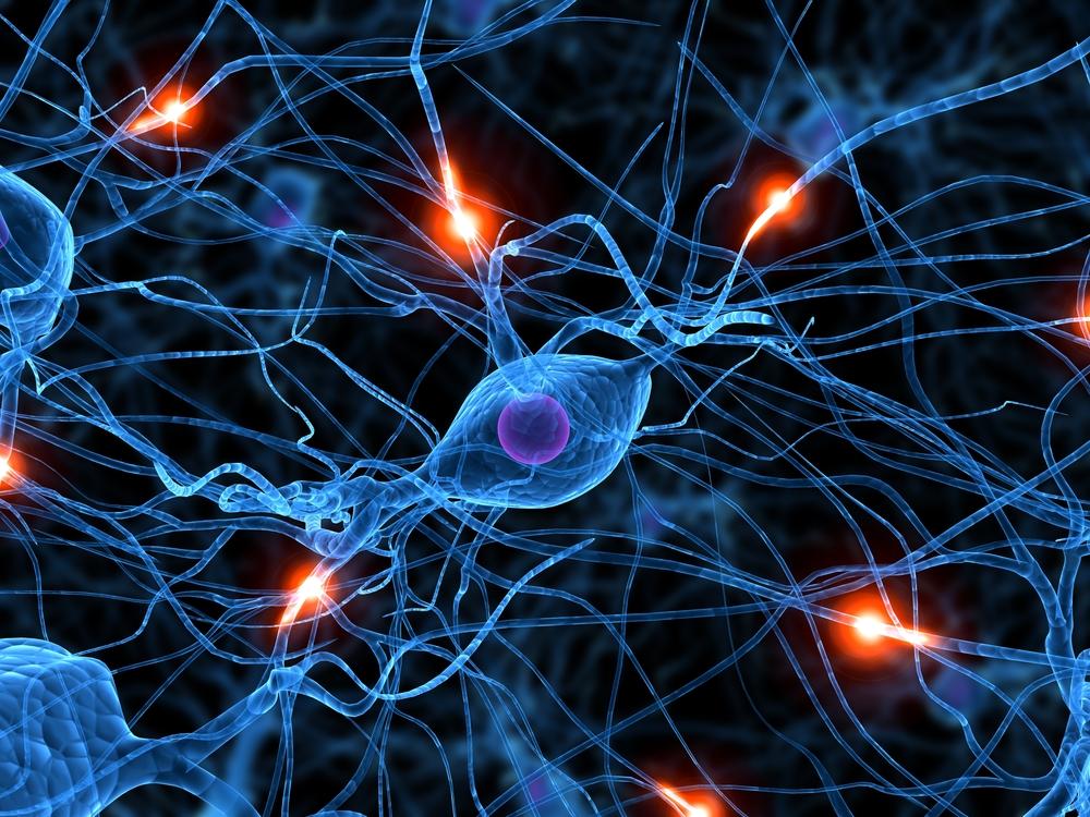 Jak na správnou činnost mozku
