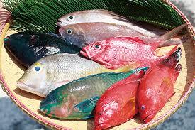 Rybí speciál I. díl – Jak poznat čerstvou rybu a jaké používat koření