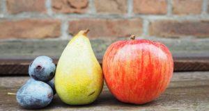 Zasaďte si ty nejatraktivnější ovocné stromky!