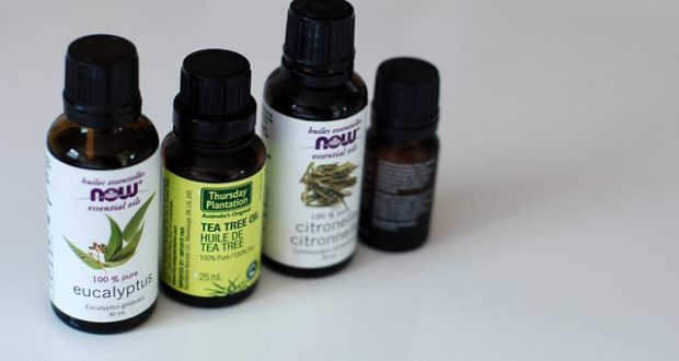 Čajovníkový olej: víte, jaké je jeho využití?