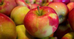 Spadaná jablka: jak je využít?