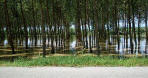 Povodňové plány pomáhají zachraňovat životy i majetek