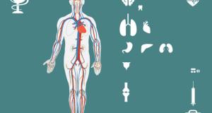 Co se může skrývat za bolestí žaludku?